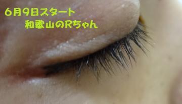 005_convert_20120827192712.jpg