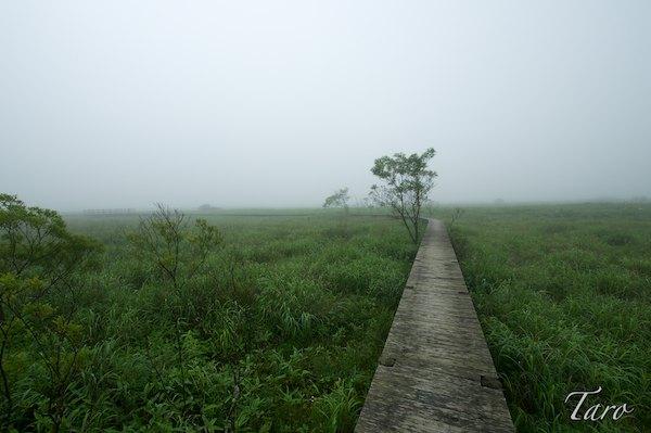 恋問自然観察公園