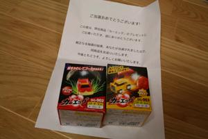 6_20121028035051.jpg