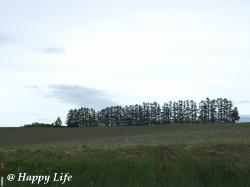 Happy Life-2009062204