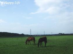 Happy Life-2009062303