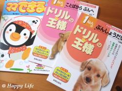 Happy Life-2009072201
