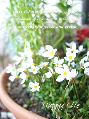Happy Life-2012022702
