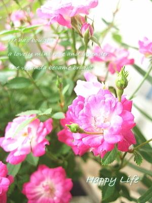 Happy Life-2012051501