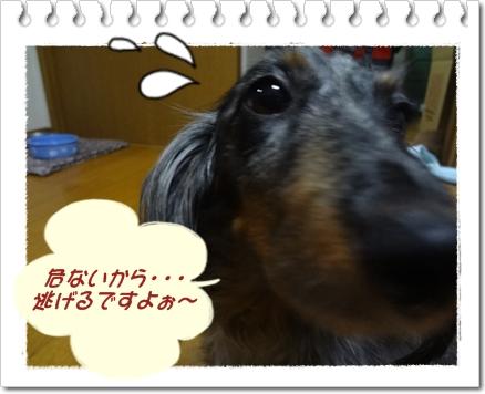 20120609-3.jpg