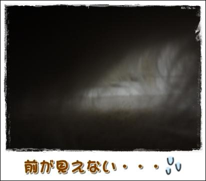 20120704-4.jpg