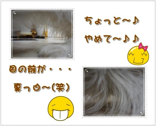 20120704-5.jpg