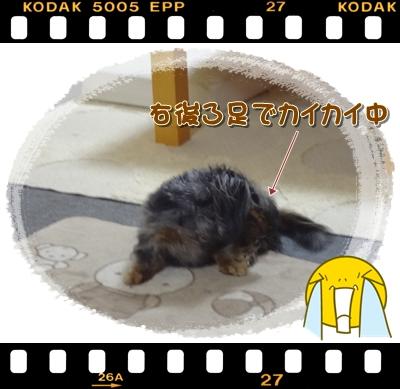 20120708-6.jpg