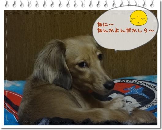 20120716-4.jpg