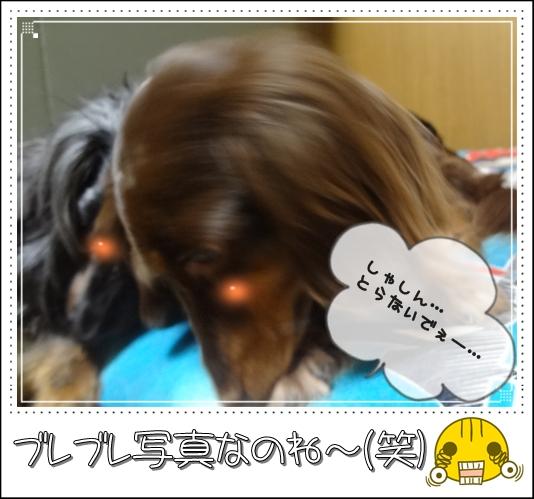 20120718-4.jpg