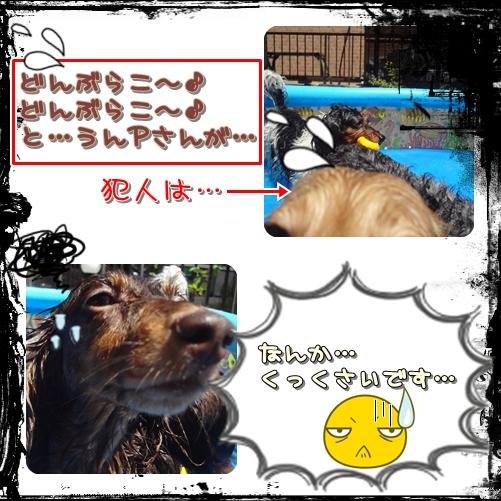 20120809-3.jpg
