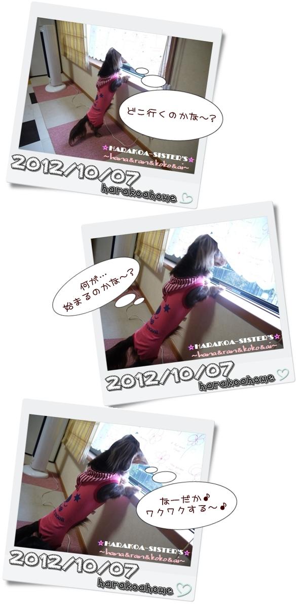 20121101-3.jpg