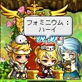 Maple120809_042513.jpg