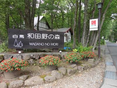 和田野の森