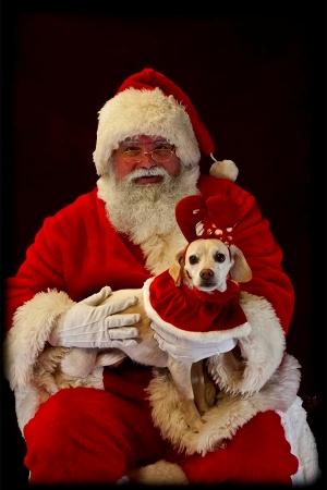s-Santa2011-2.jpg