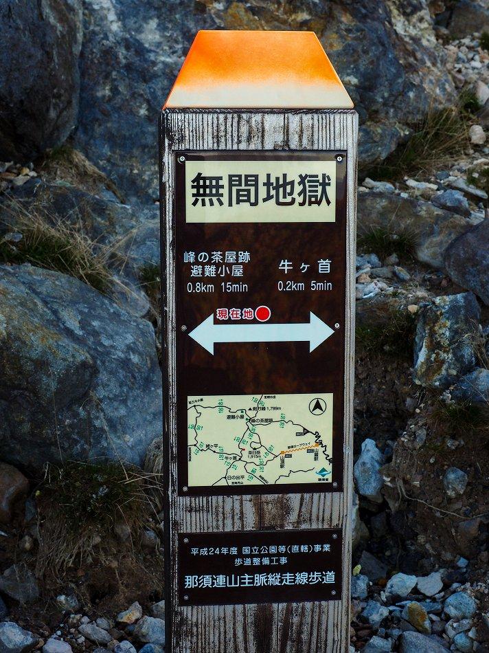 P9290078-2.jpg