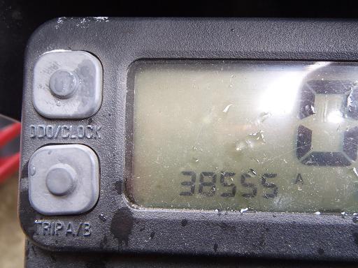 P5020009b.jpg