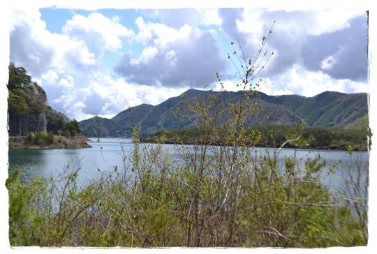 西湖2お散歩西湖