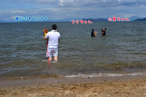 134_20120910171412.jpg