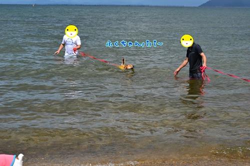 152_20120910171411.jpg