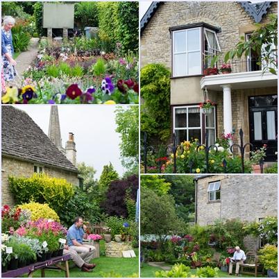 flowers_20120819035125.jpg