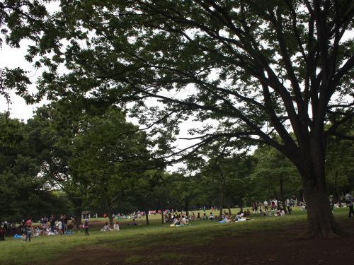 代々木公園へ行く。