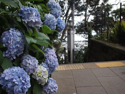 続☆江ノ島へ行く5