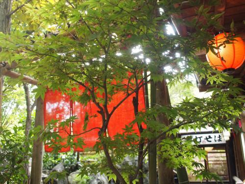 9月8日☆深大寺へ行く3。