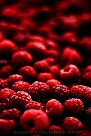 果物・ラズベリー