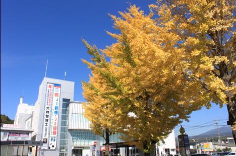 紅葉(韮崎)