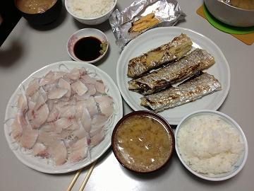 太刀魚 004
