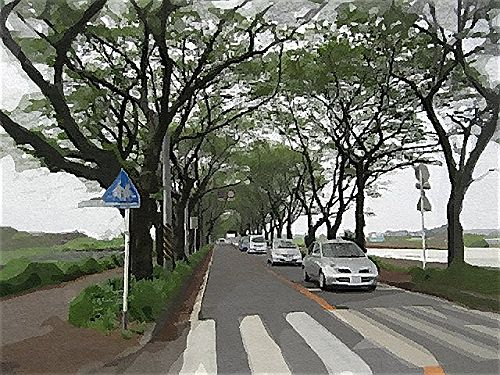 IMG_3693(ガッシュ)