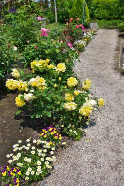 2012-05-26+2012-05-26+001+009_convert_20120526194158.jpg