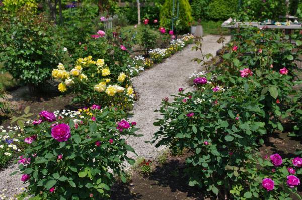 2012-05-26+2012-05-26+001+028_convert_20120526194523.jpg