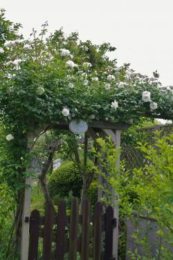 2012-05-31+2012-05-31+001+012_convert_20120531190910.jpg
