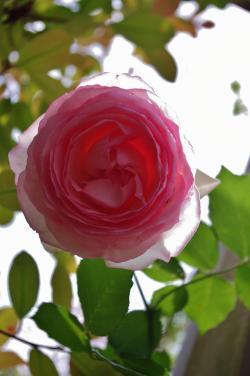 2012-05-31+2012-05-31+001+014_convert_20120602194700.jpg