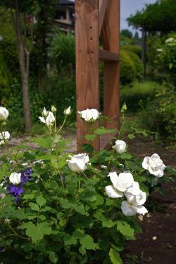 2012-05-31+2012-05-31+001+055_convert_20120531191905.jpg