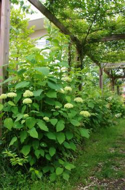 2012-06-13+2012-06-13+001+026_convert_20120613171252.jpg
