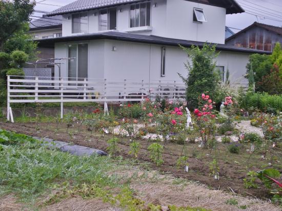 2012-06-18+2012-06-18+001+005_convert_20120618193504.jpg