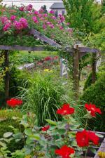2012-06-23+2012-06-23+001+038_convert_20120623193014.jpg