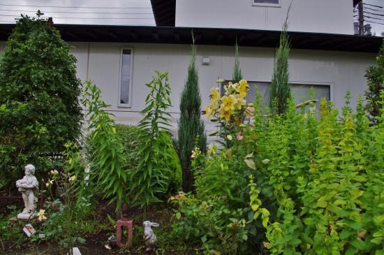 2012-07-12+2012-07-12+001+003_convert_20120712172249.jpg