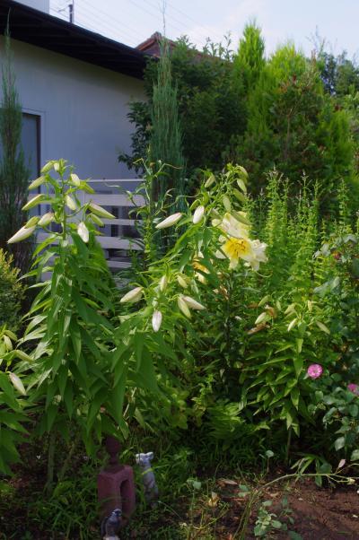2012-07-23+2012-07-23+001+017_convert_20120724171754.jpg