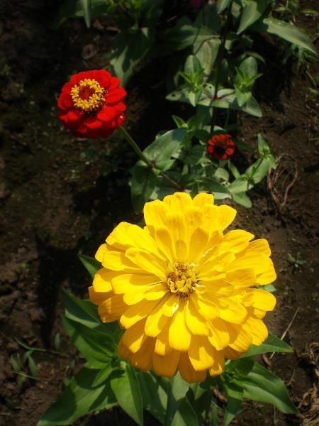 2012-07-27+2012-07-27+001+020_convert_20120727195910.jpg