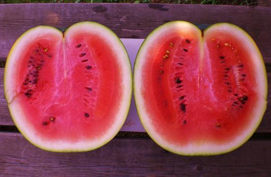 2012-07-28+2012-07-28+002+018_convert_20120728172943.jpg