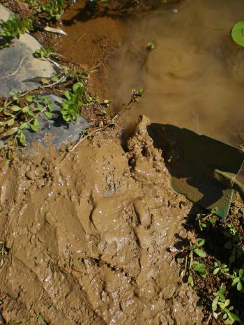 2012-09-24+2012-09-24+001+026_convert_20120924171231.jpg