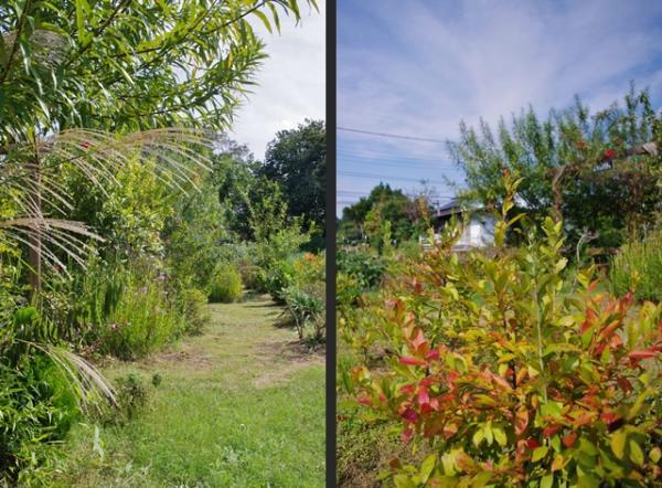 2012-09-30+2012-09-30+001+057-horz_convert_20120930123858.jpg