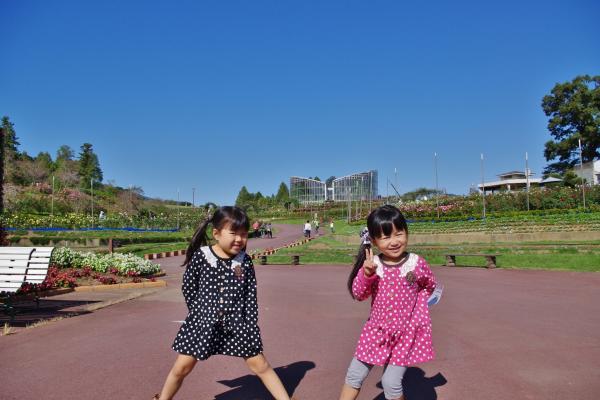 2012-10-13+2012-10-13+001+008_convert_20121013175500.jpg