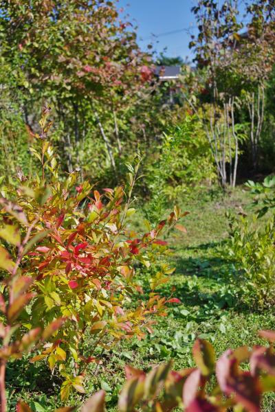 2012-10-16+2012-10-16+001+026_convert_20121016142308.jpg
