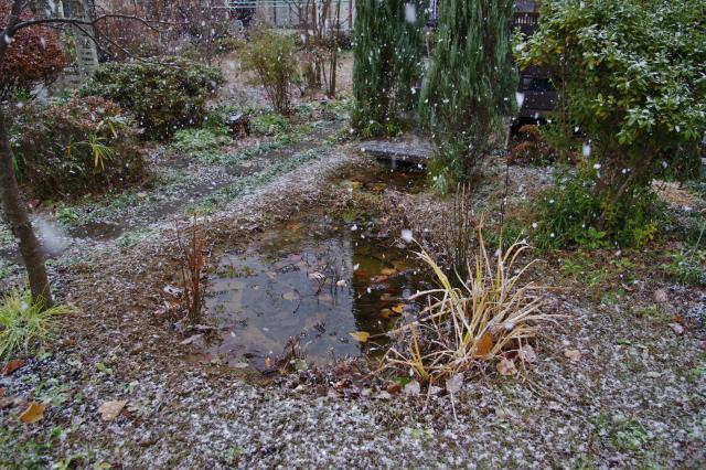 2012-12-01+2012-12-01+001+024_convert_20121201132136.jpg