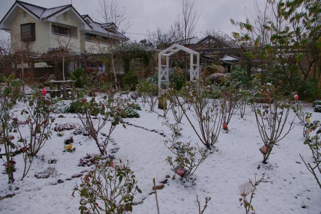 2012-12-01+2012-12-01+001+065_convert_20121201132608.jpg